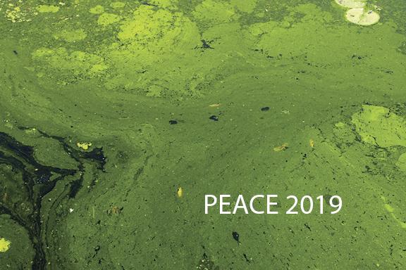 peace2019_card-96-2